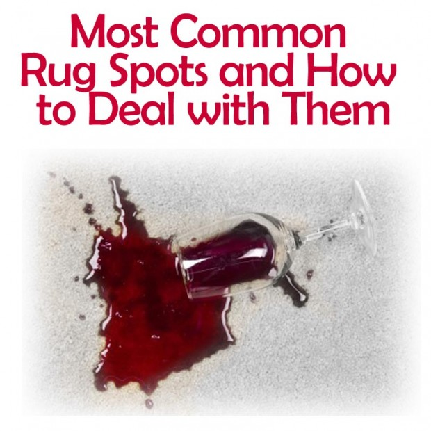 Most common rug spots and how to deal with them