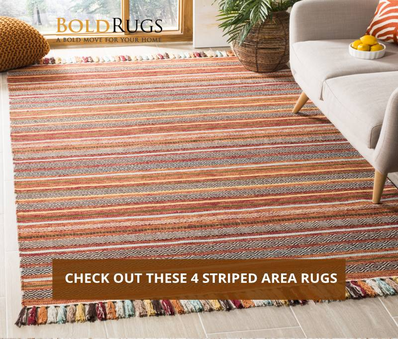 Check Out These 4 Striped Area Rugs