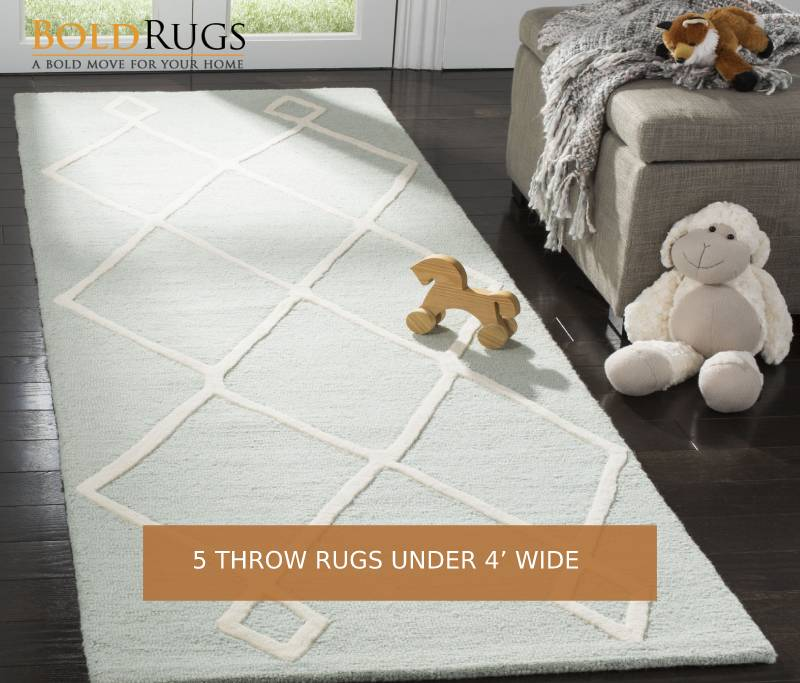 5 Throw Rugs Under 4' Wide