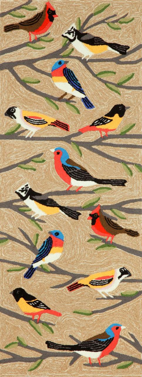 Trans Ocean Frontporch Birds Multi 1440 44 Area Rug Free
