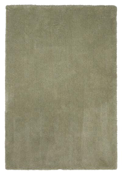 KAS Bliss  1568 Sage Shag area rug