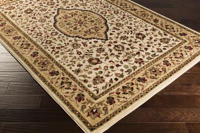 Surya Riley RLY5035 area rug