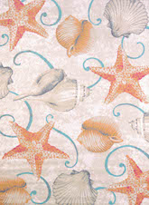 United Weavers Regional Concepts Stars And Shells Natural